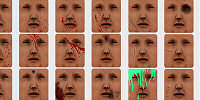 facewounds addon